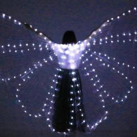 Asa Wings de LED 2mm Inteira